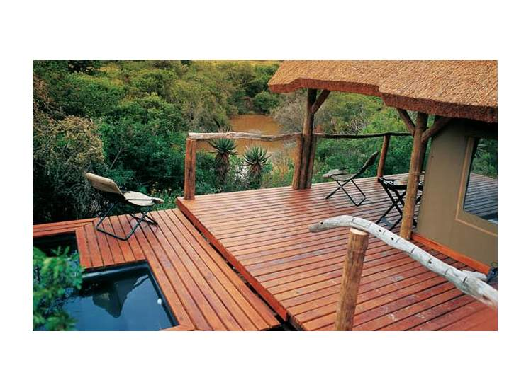 Bayethe Tented Lodge 4*